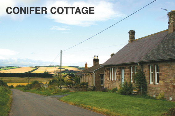 Conifer Holiday Cottage