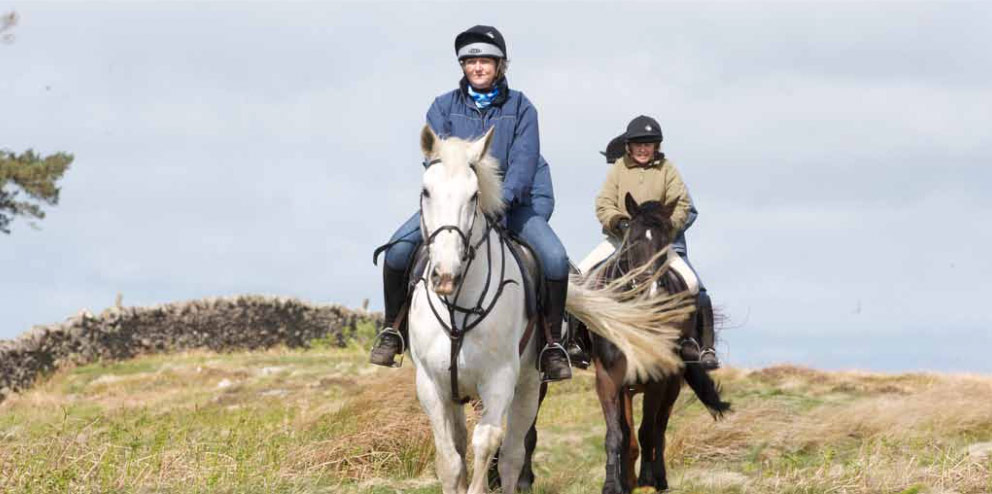 Horse riding in the Cheviot Hills with Kimmerston Riding Centre