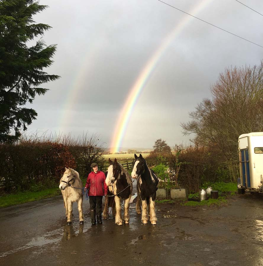 A Rainbow over Kimmerston Riding Centre